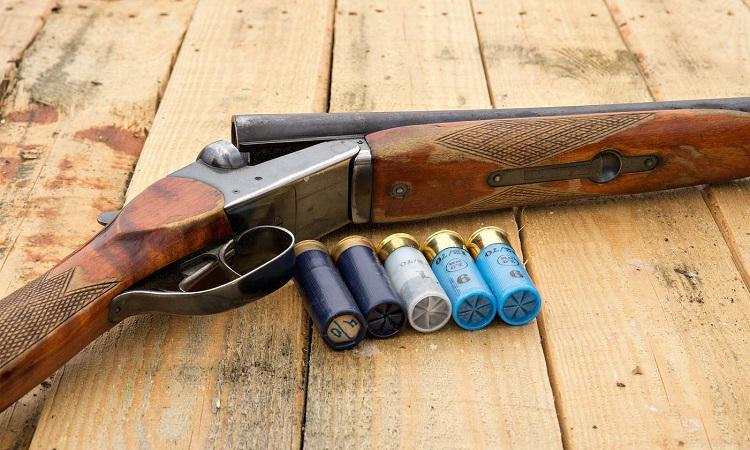 Are Buckshot Good for Beginners?
