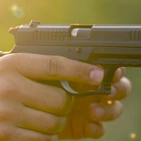 Guns Guide